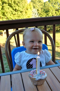 first birthday, birthday party