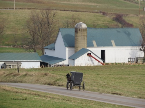 Amish buggy, rural road, Holmes County Ohio