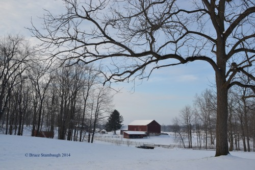 snow scene, barn in snow