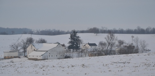 Amish farm, fresh snow, rural landscape