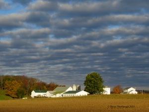 fall clouds, dappled clouds, dappled sky, cumulus clouds