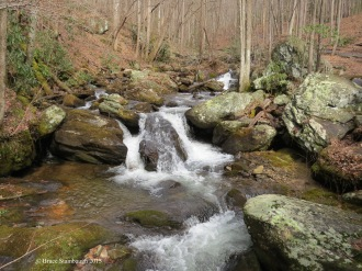 Smith Creek, Anna Ruby Falls