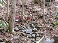 slippery rocks, hiking