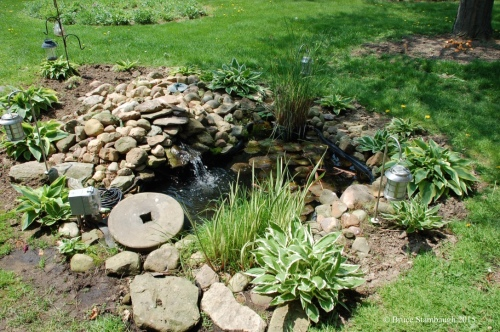 backyard garden pond