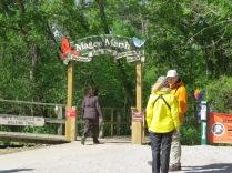 Magee Marsh, boardwalk