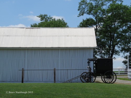 Amish buggy, Holmes County OH