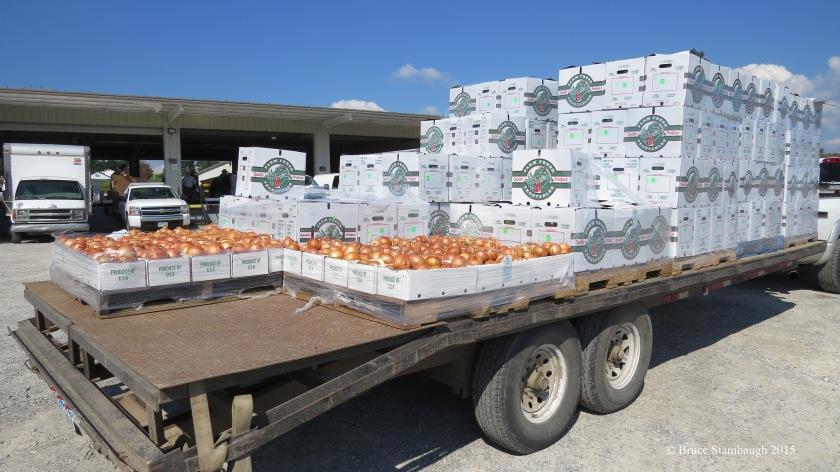 onions, produce auction