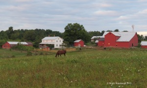 Amish farmstead, Holmes Co. OH