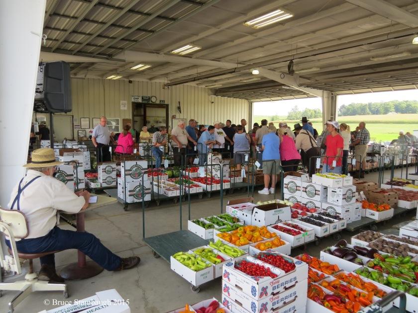 Farmers Produce Auction, Mt. Hope OH