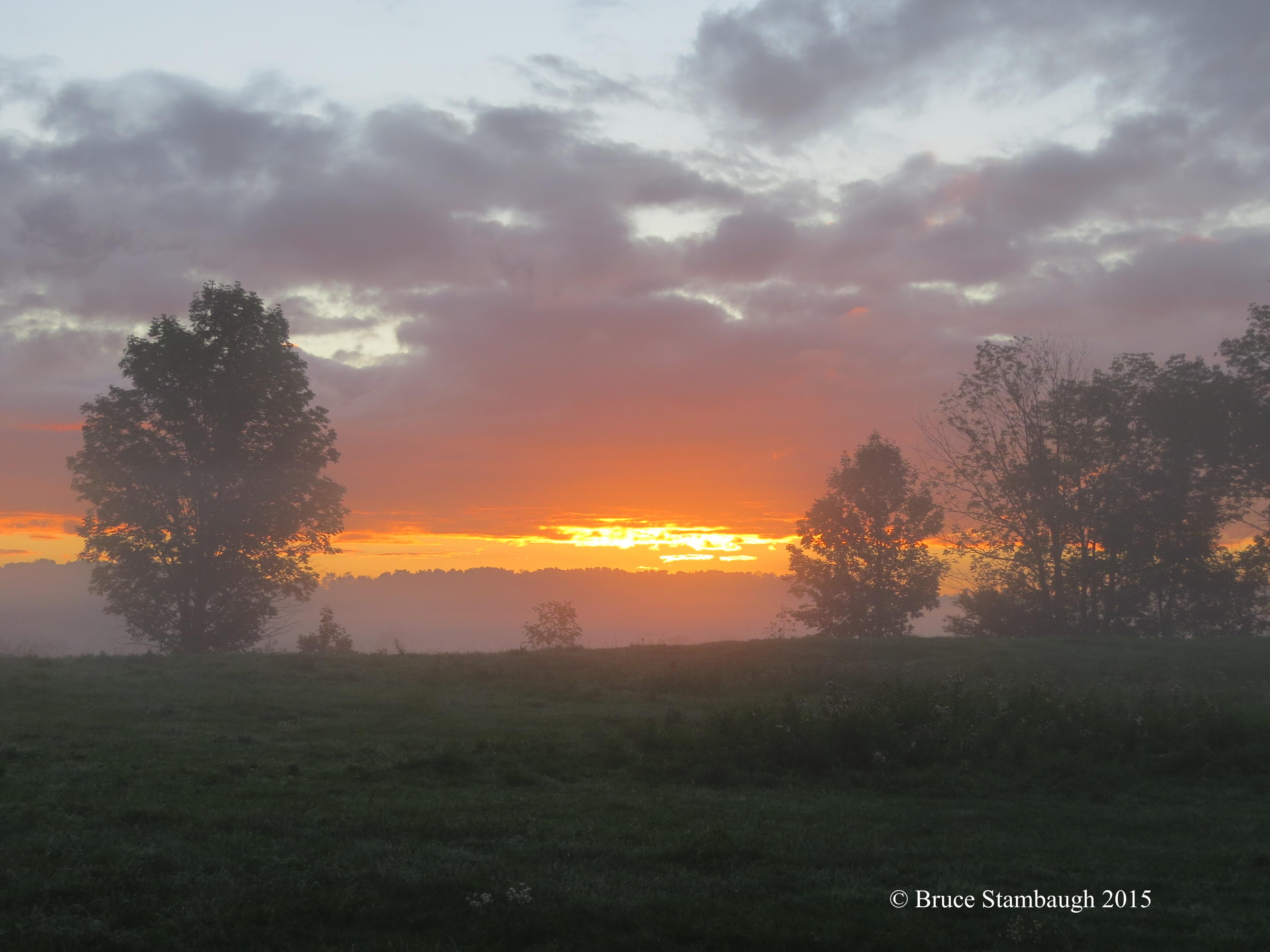 mist, sunrise