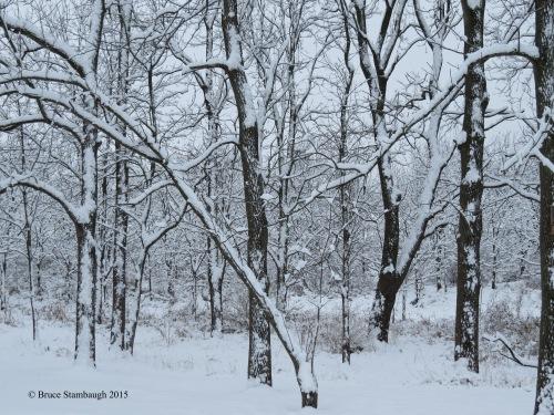 November snows, Ohio