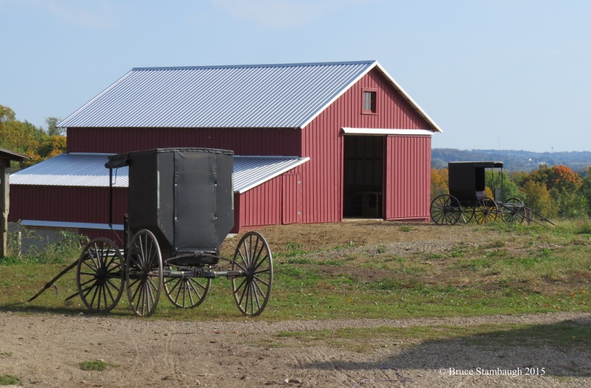 Amish buggies, Holmes Co. OH