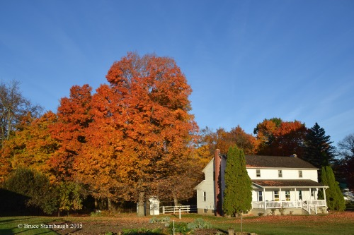autumn, Amish farm, Ohio's Amish country