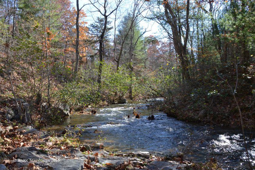 mountain stream, Shenandoah NP