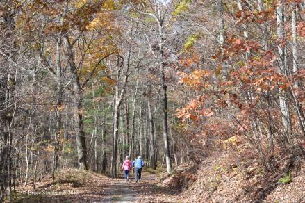 elder hikers