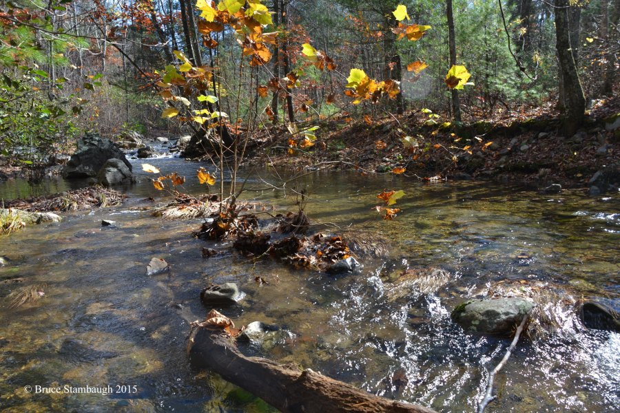stream ripples