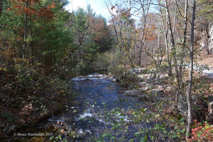 mountain stream view