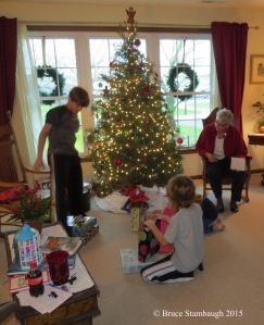 Christmas tree, opening gifts, family