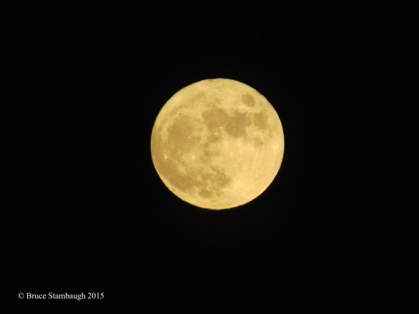 frosty full moon