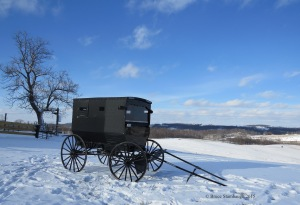 Amish buggy, snowy day