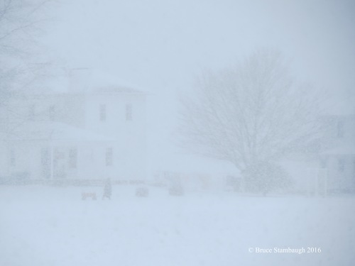 whiteout, snowstorm