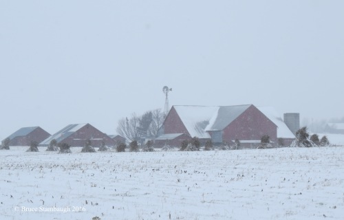snowstorm, Ohio's Amish country