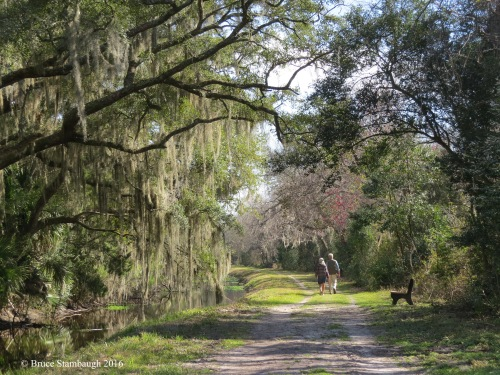 Egan's Creek Greenway