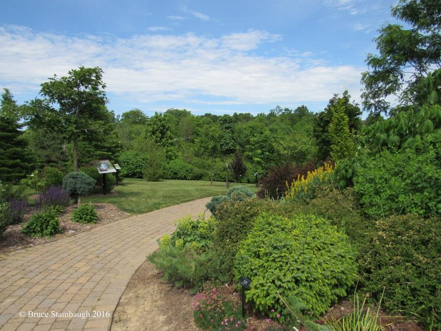 path, OARDC, Secrest Arboretum