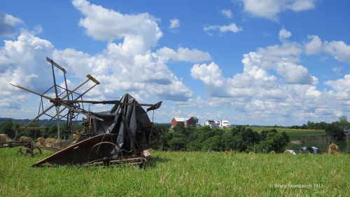 Amish farm, summer