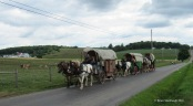 wagon train, Ohio's Amish country