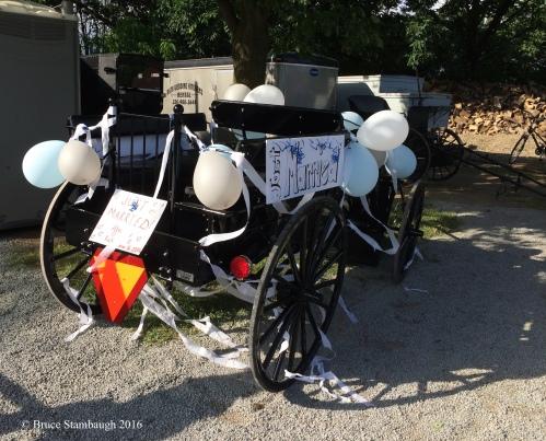 Amish wedding, Amish buggy