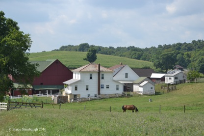 Amish farm, Holmes Co. OH