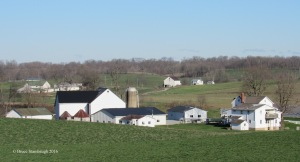 Amish farmstead