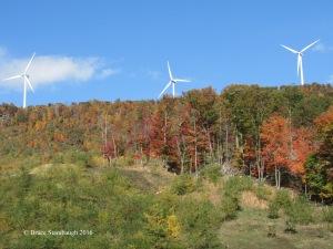 giant wind turbines, fall leaves