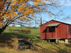 Amish buggy, autumn