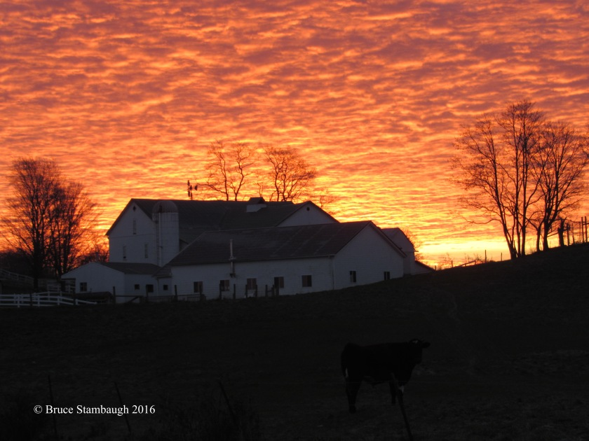 sunrise, Amish farm