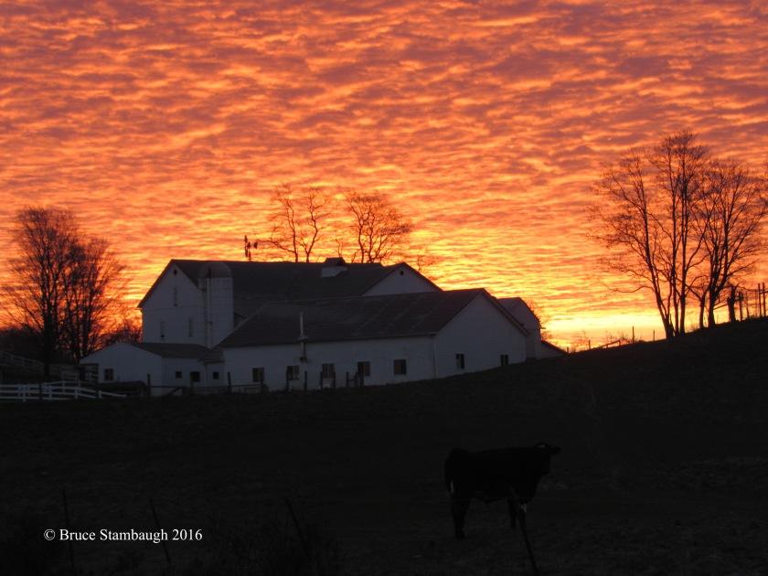 sunrise, Amish farm