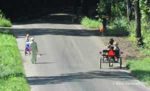 Amish children, Amish cart