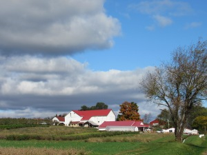 rural view, farmstead