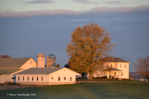 Amish farmstead, dawn's light