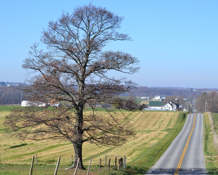 Ohio's Amish Country, Holmes Co. OH