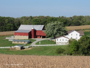 Holmes Co. OH farm