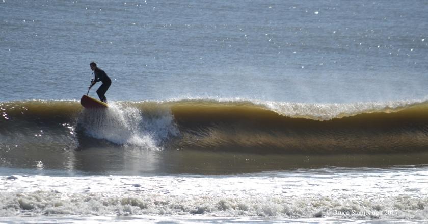 paddle board, surfing, Amelia Island FL