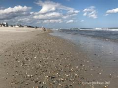 Amelia Island, Main Beach