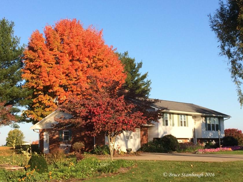 home, fall scene