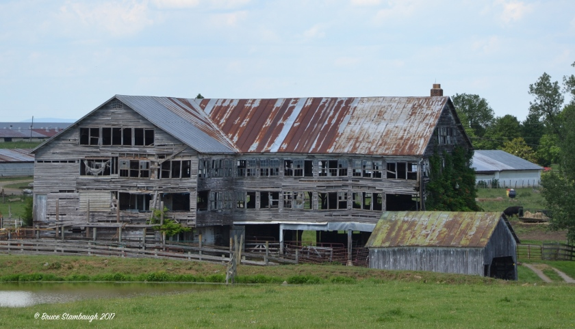 weathered barn, Virginia