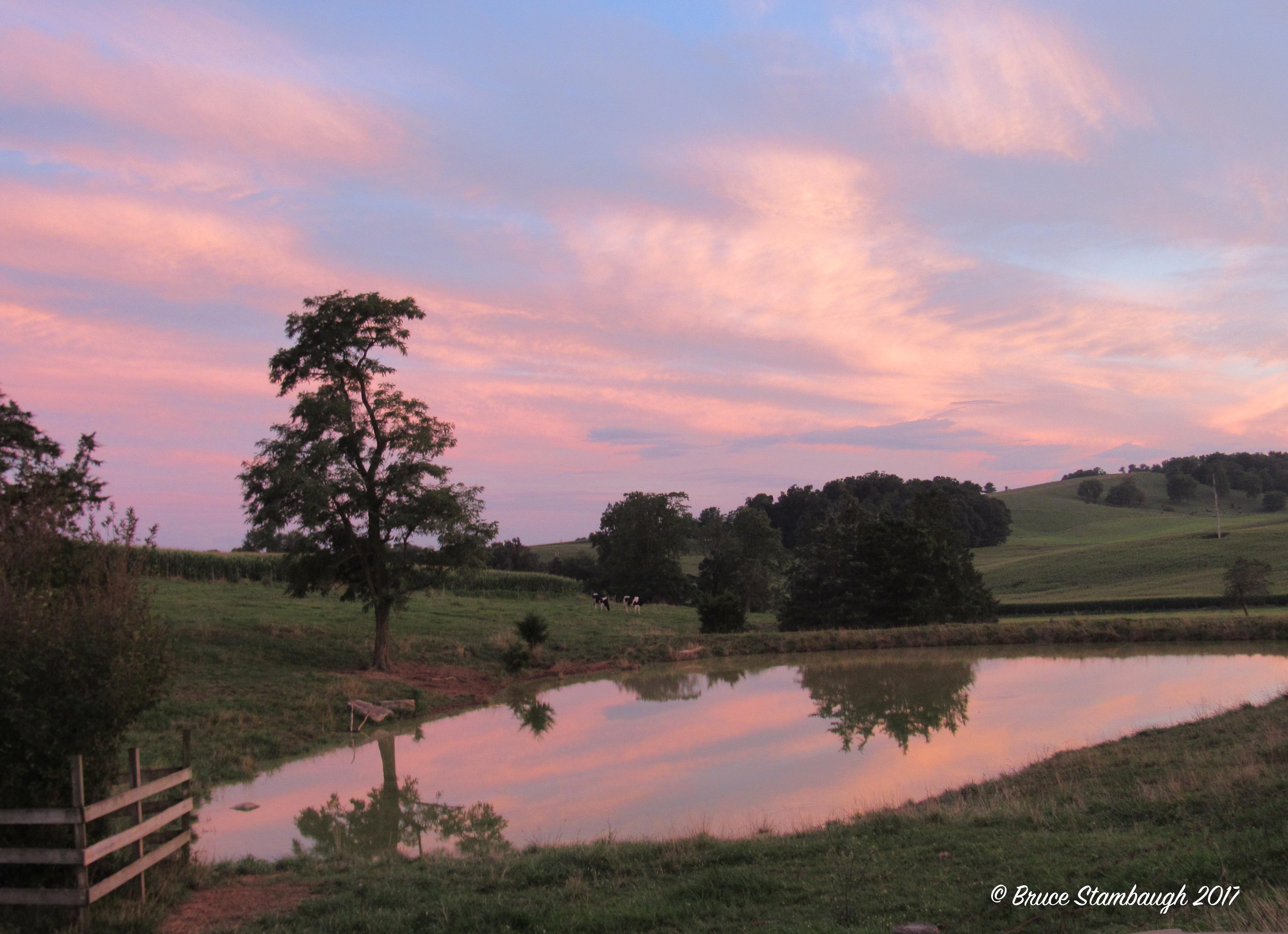 dairy farm, Rockingham Co. VA, Shenandoah Valley
