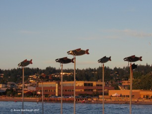Edmonds WA harbor