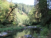 Drift Creek, Lincoln City OR