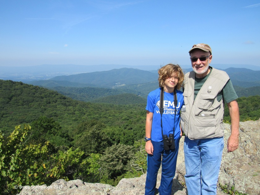 Bearfence Mt., Shenandoah NP